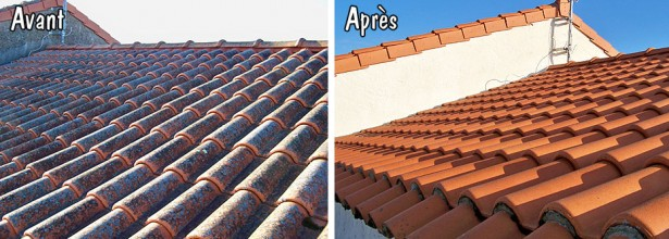 Entretien toiture démoussage toiture